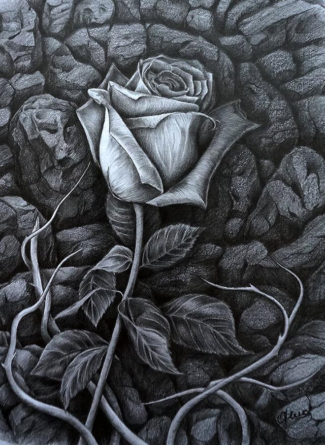 Rose and rocks by Olya-N-i-k