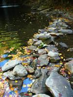 Autumn Creek + Rocks by abuseofstock