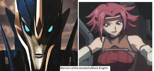 Warriors of the Autobots-Black Knights
