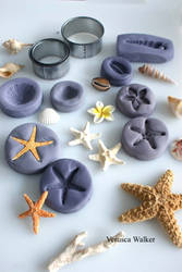 Shells mould by Verusca