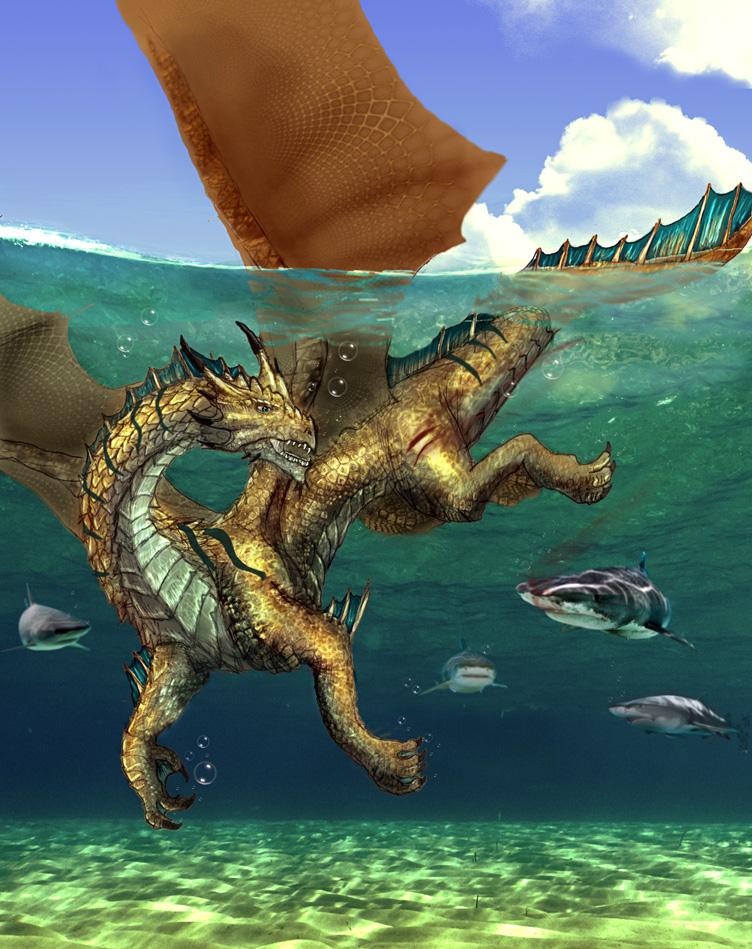 Shark Attack by Netarliargus
