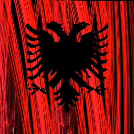 shqiperia Gallery