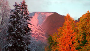 Alaska Seasons