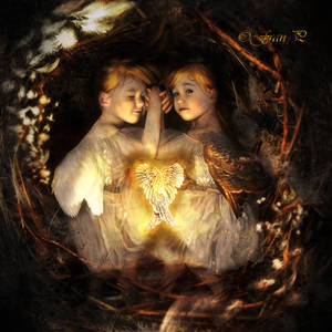 The Nest... by FrancescaPoliti