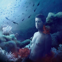 Coral by FrancescaPoliti