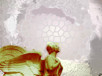 Angel by roosta