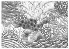 Zentangle Under the Sea-Shaded by vlacruz