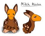 Mitch Mocha