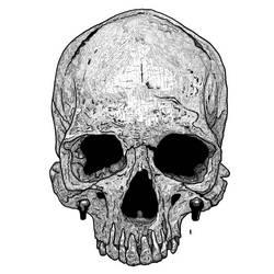 Skull fineline by mnetto