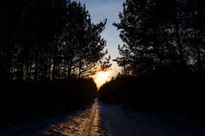 Winter by Lizalainx3
