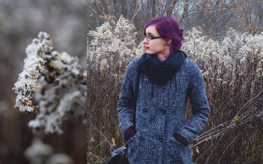 about winter in my little heart by miss-avaria