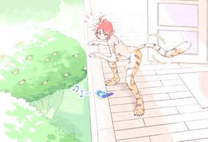 Katt IV