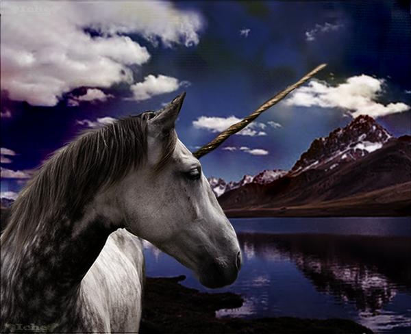 Unicorn Lake by wingdream