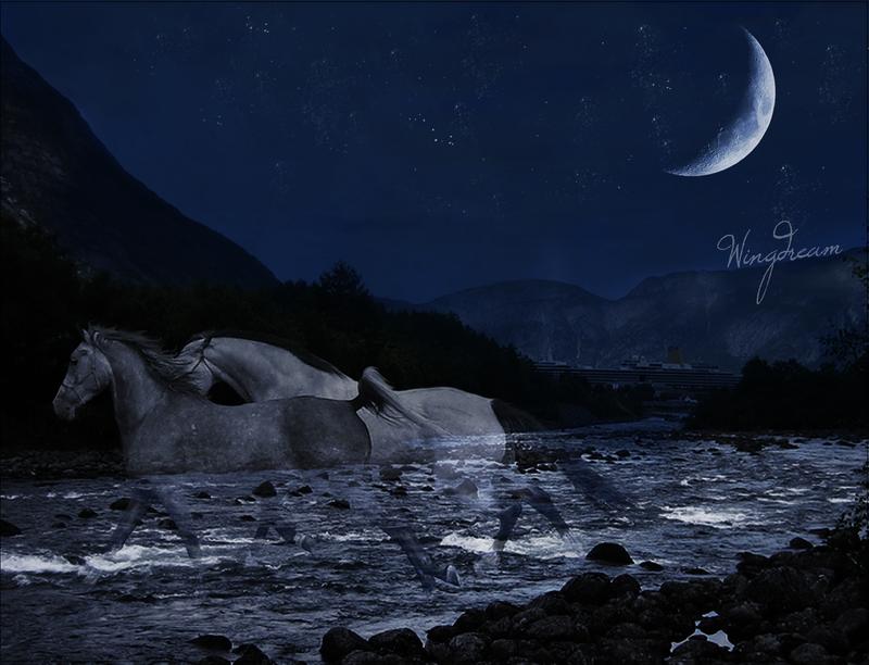 .moonlight. by wingdream