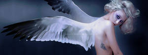 Angelic Spread