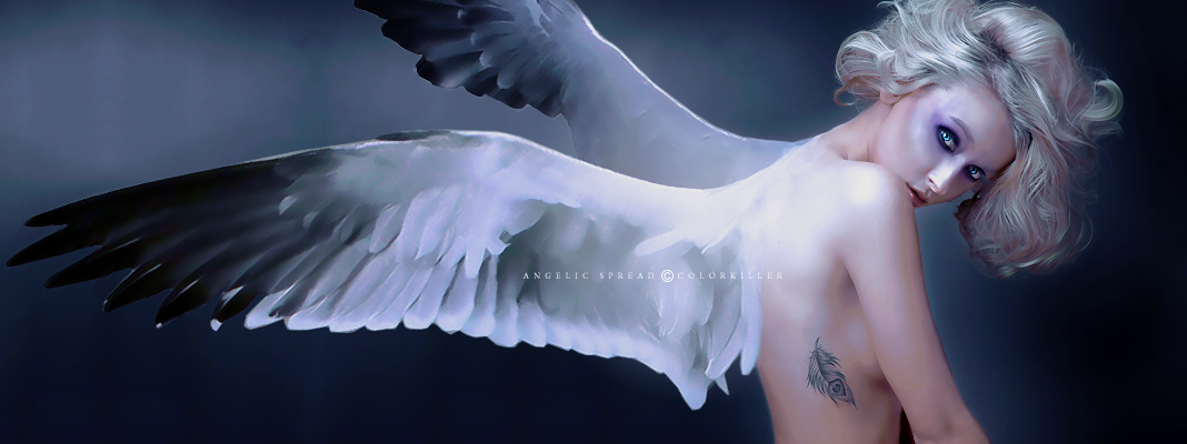 Angelic Spread by AlexandriaDior