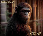 Caesar - Dawn of the planet of the apes