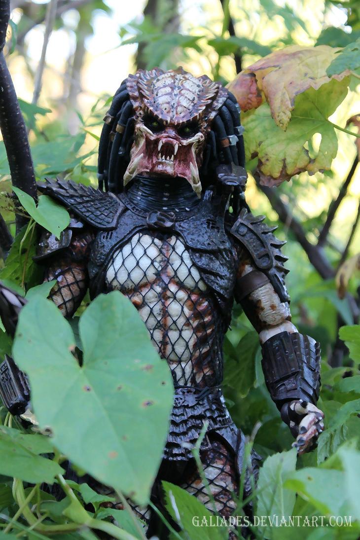 Predator 5 by Galiades