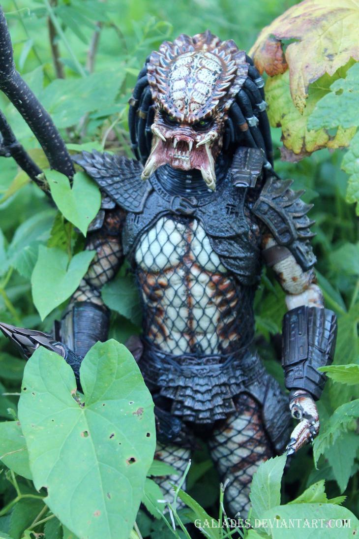 Predator 6 by Galiades