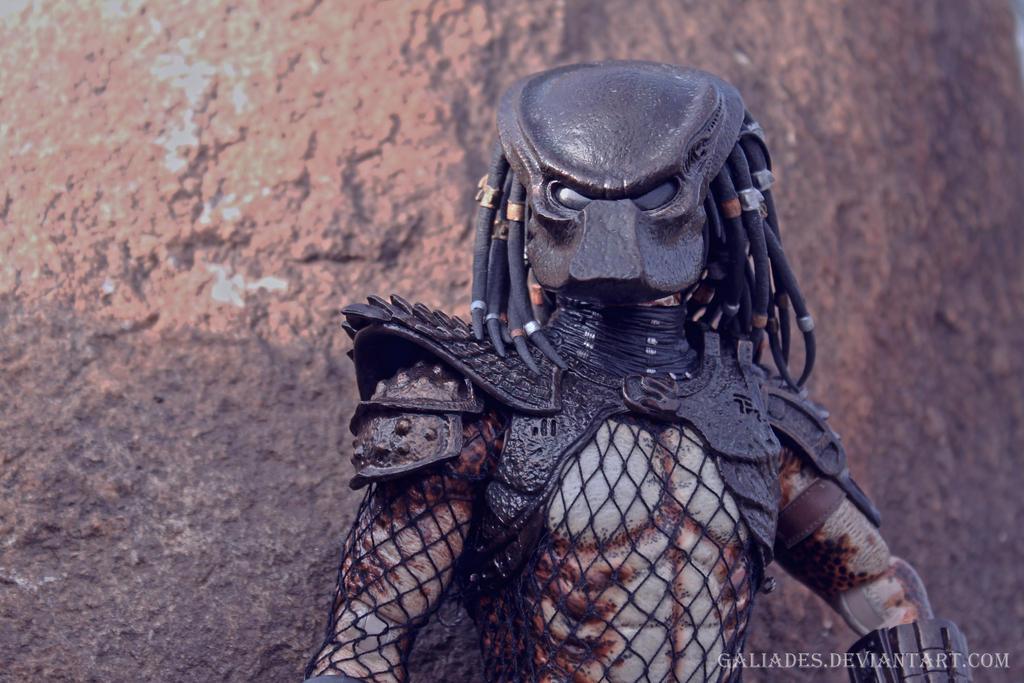 Predator 23 by Galiades