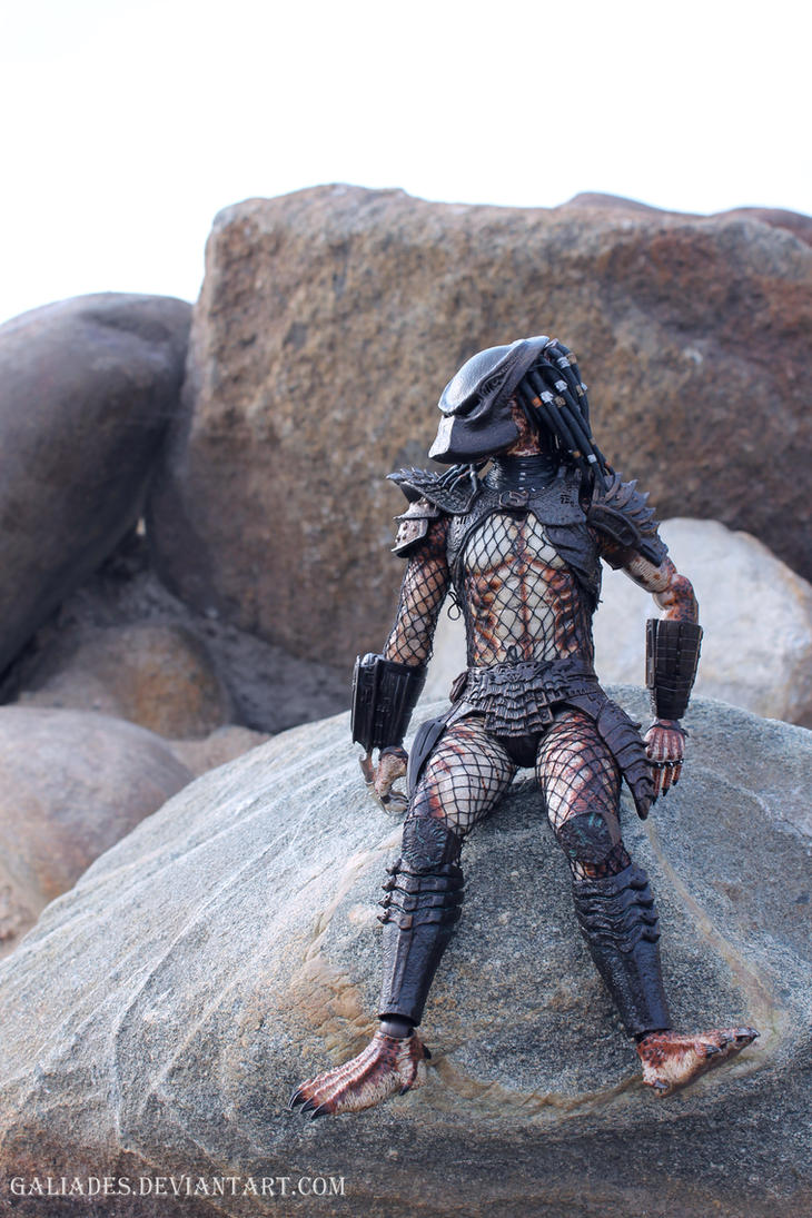 Predator 24 by Galiades