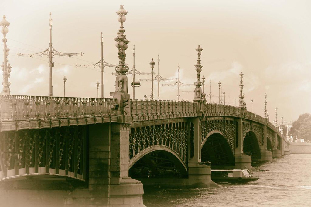 St. Petersburg Trinity Bridge by Galiades