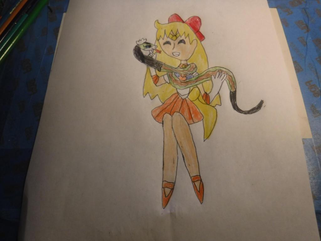 Sailor Moon + Kung Fu Panda by sydneypie