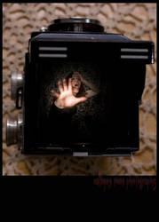 Scream Queenie Photographer by CalliopesRoom