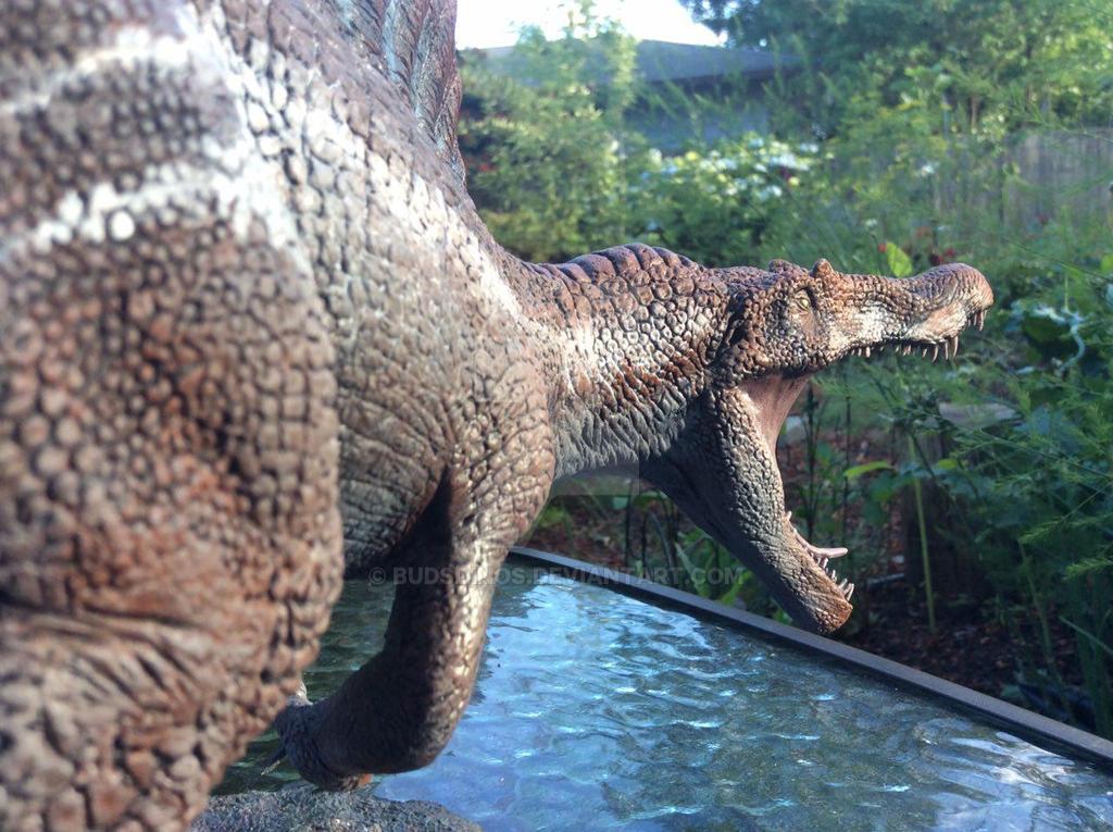 Spinosaurus by BudsDinos on DeviantArt