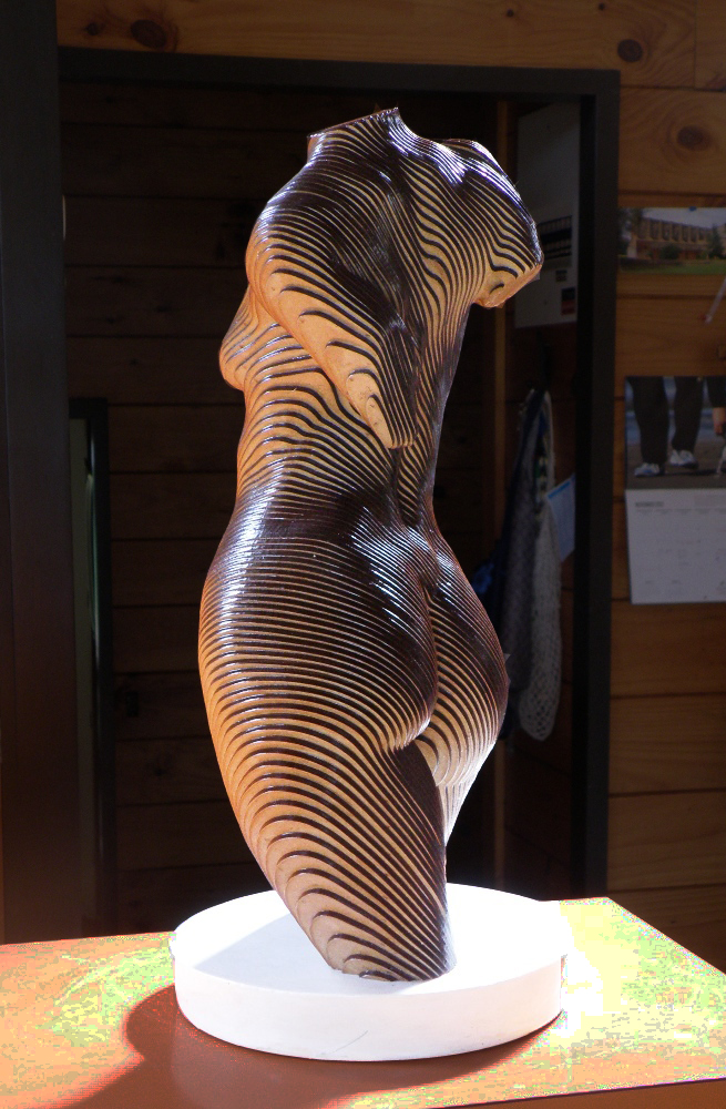 Rosie, The topology of the Torso by olivierduhamel