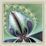FE09 Orchid by Xantipa2