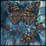 Ab09 Again Butterfly C
