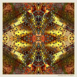 Ab09 Beauty of Symmetry 21 by Xantipa2