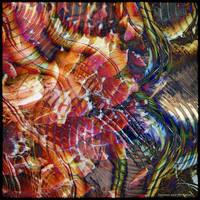 Ab10 Nature Abstract by Xantipa2