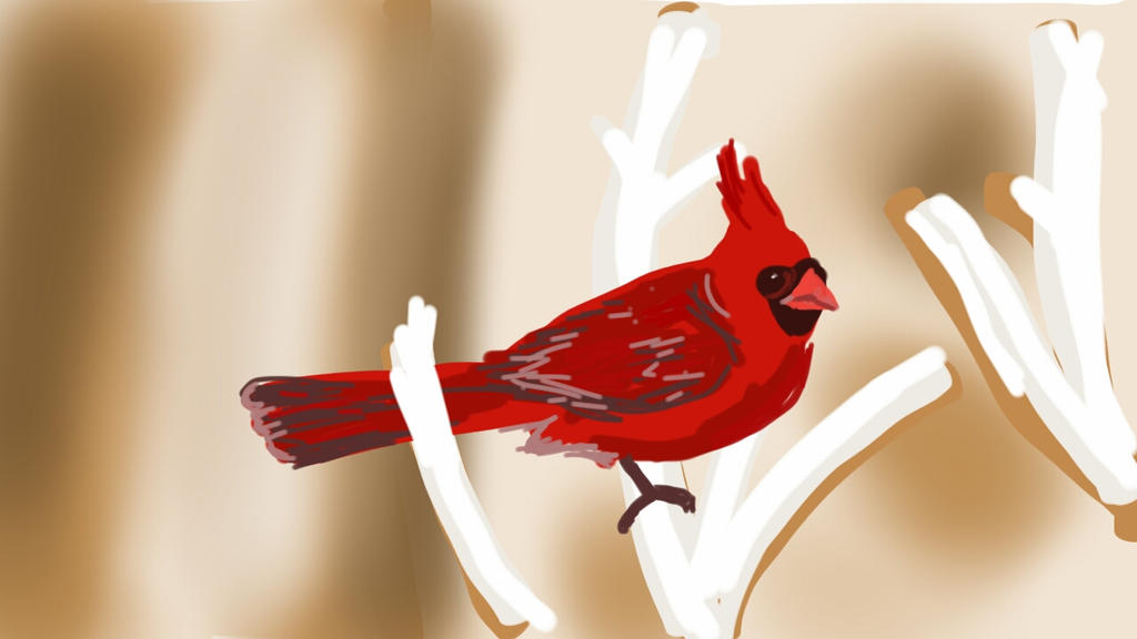 Cardinal by TAV15