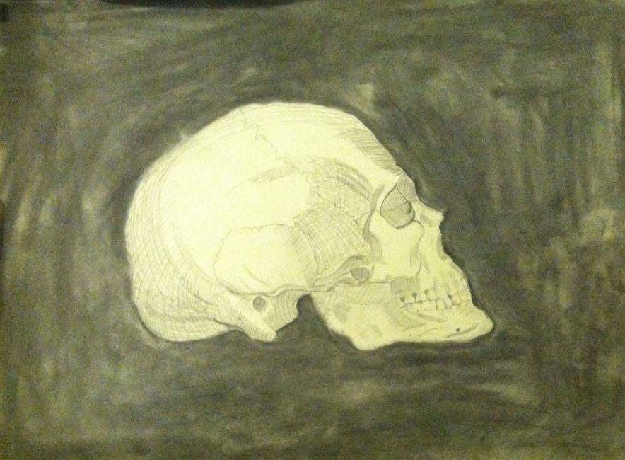 Skull by Rezi-Chan