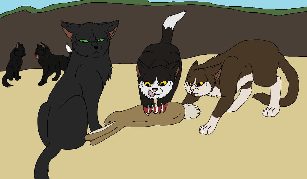 Warrior Cats Magpie