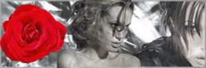 Angelina Jolie by Dosmen