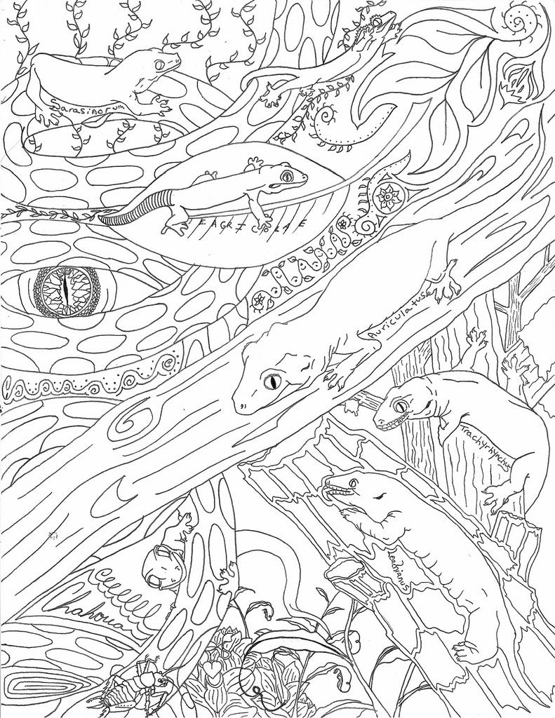 New Caledonian Gecko line drawing by LandGart