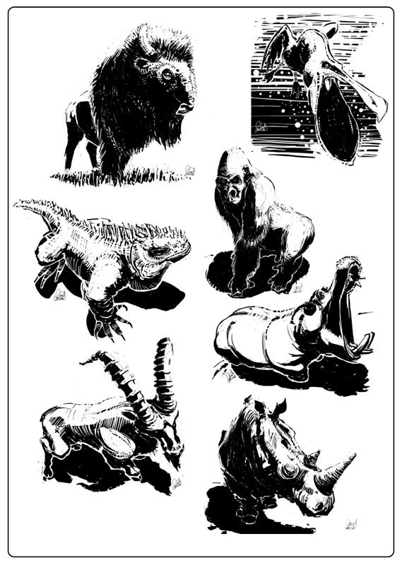 Book Art 'Animalejos' by AltoContrasteStudio