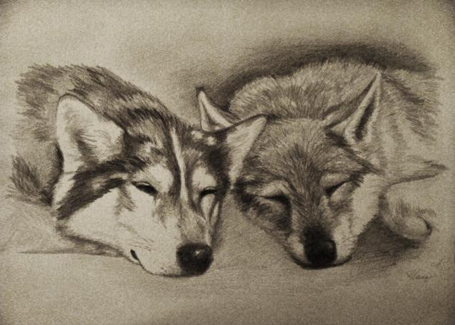 Sweet Dreams by Nookawolf