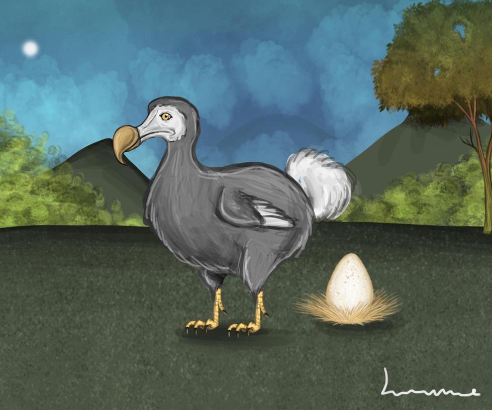Dodo by Louisetheanimator
