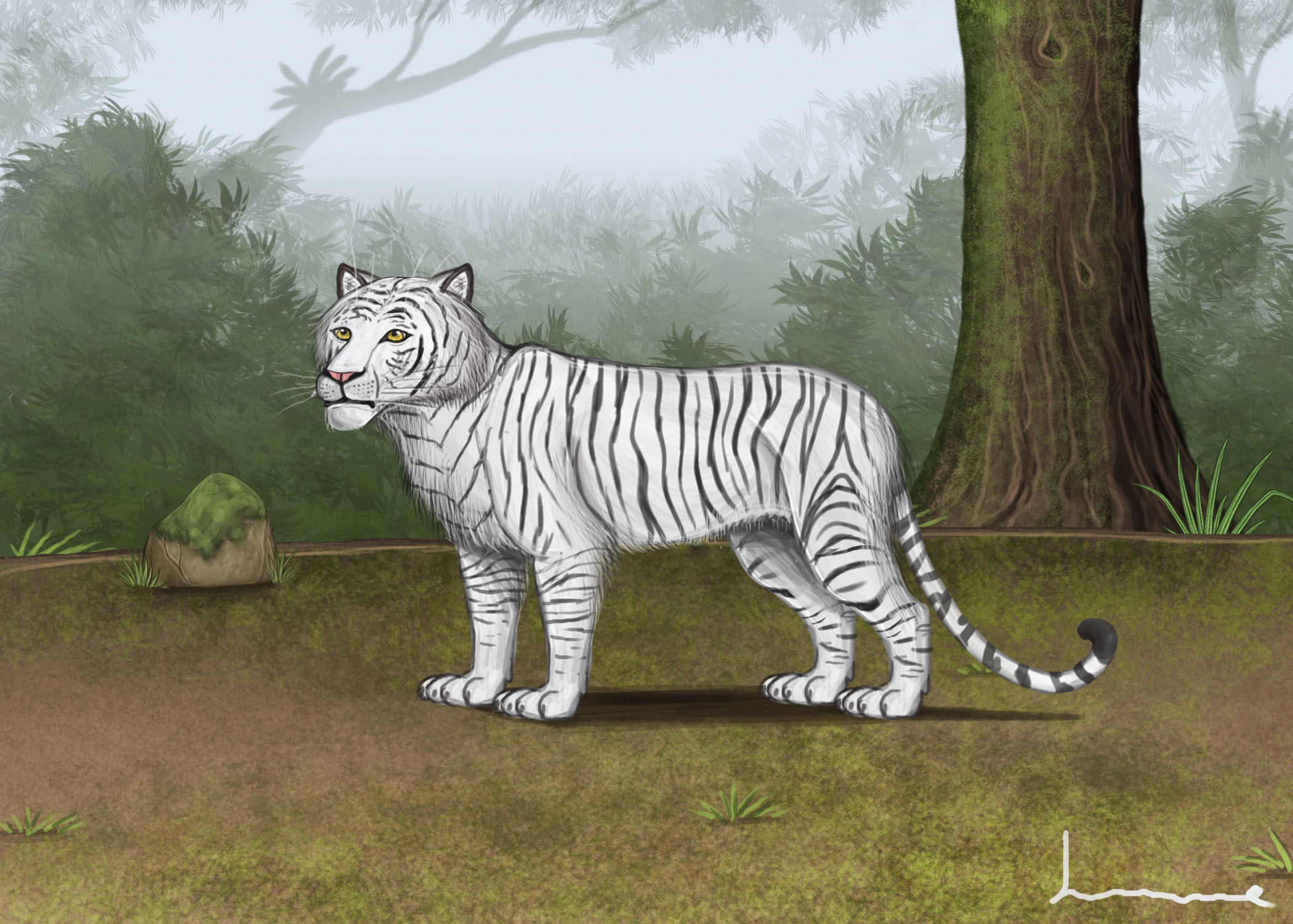 White Bengel Tiger by Louisetheanimator