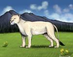 American Lion 2