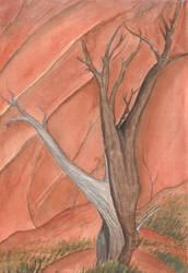 Gerald's Tree