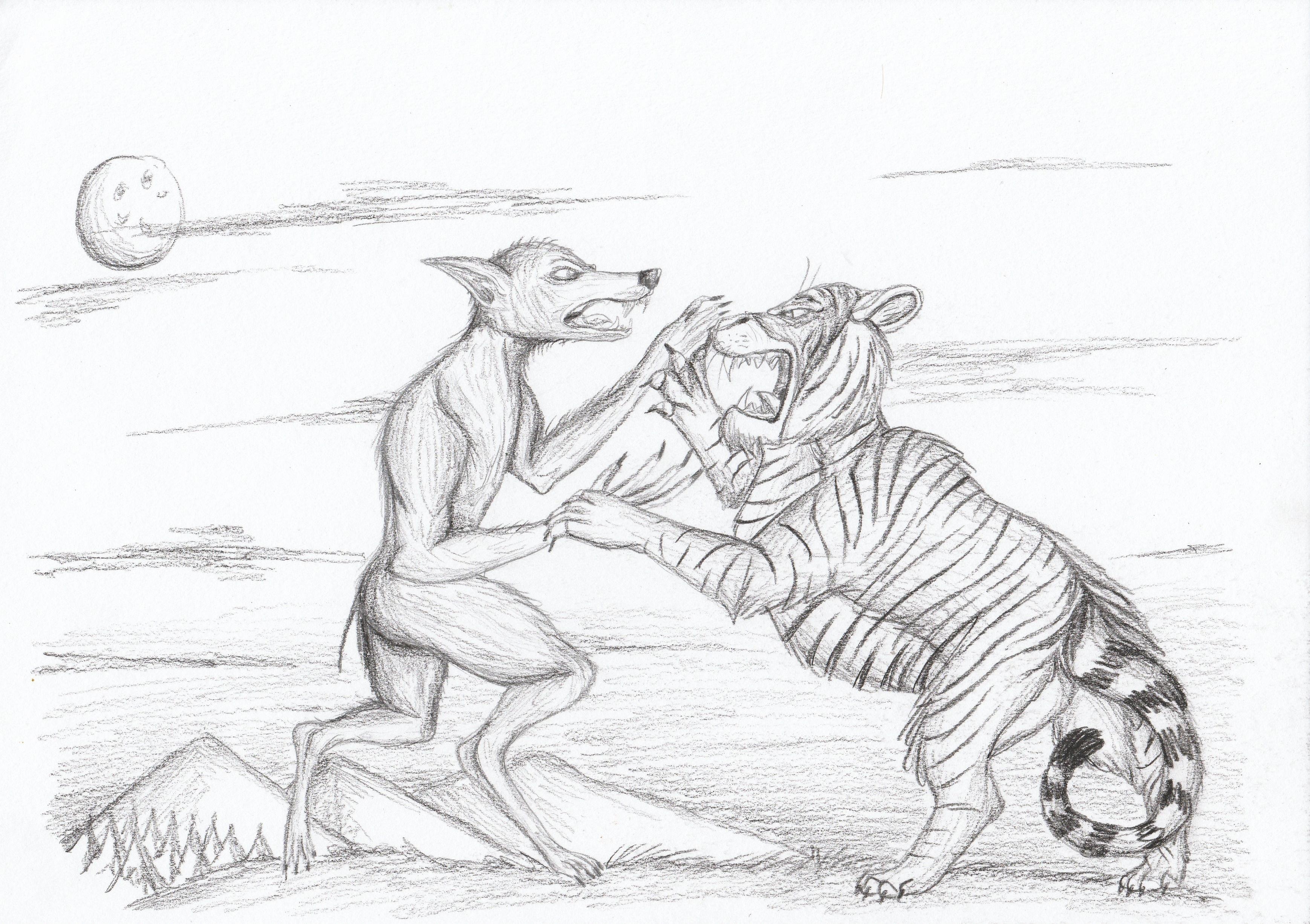 Werewolf vs Tiger by Louisetheanimator