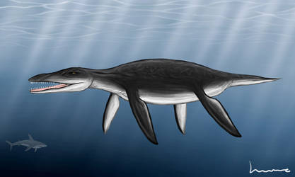 Liopleurodon 2