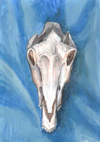 Horse's Skull on Blue by Louisetheanimator