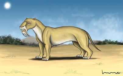 Thylacosmilus 2