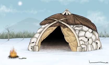 Caveman Shelter